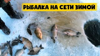 ЛУНКА кормит Зимняя РЫБАЛКА на СЕТИ Промысловый лов КУЧА РЫБЫ КАРАСЬ и ЩУКА