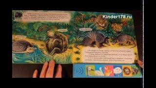 """Музыкальная книга """"Чудесные превращения""""  Живые сказки о природе. Азбукварик. Видео-обзор"""