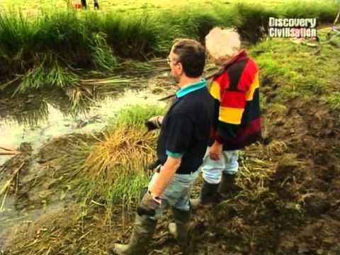 Time Team S06E08 ReedhamMarshes,. Norfolk