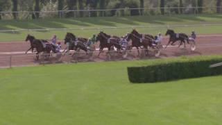Vidéo de la course PMU PRIX DES FEUX DU 1ER AOUT
