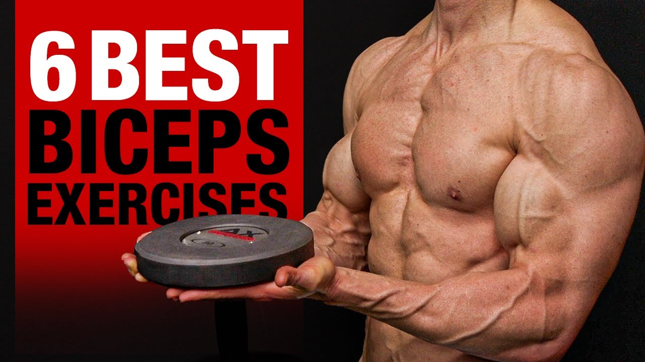 Download 6 BEST Biceps Exercises (DON'T SKIP THESE!!)