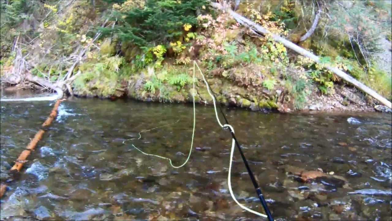 St joe river id fly fishing september 2012 youtube for St joseph river fishing
