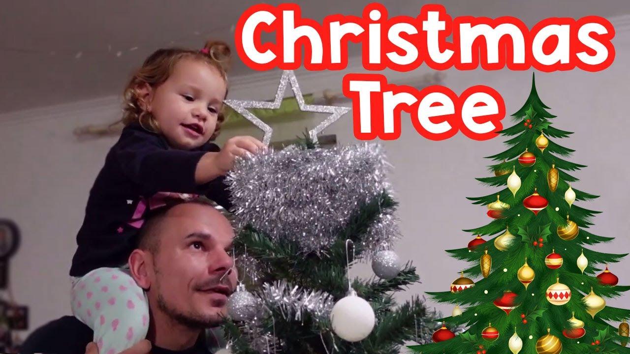 We put up a Christmas Tree for Christmas!!!