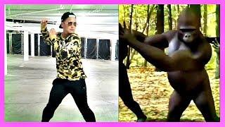 JAPAN DANCE CHALLENGE