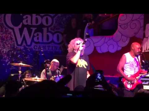 Sammy Hagar at Cabo Wabo - Cabo Wabo song