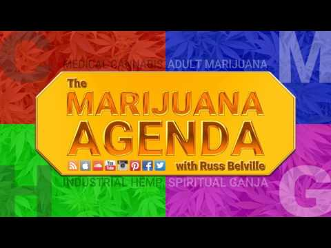 Fighting for Adult Marijuana Rights in Texas with DFW NORML