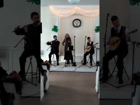 """""""Toss the Feathers"""" . Traditional Irish music. A grand concert. And great audience. ,. 11,2018."""