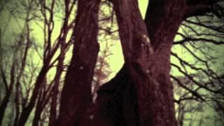 Смотреть клип Kadavar - Black Sun