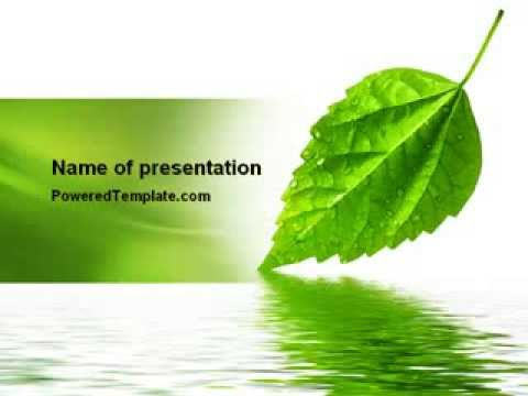 Green Leaf Falling Powerpoint Template By Poweredtemplate