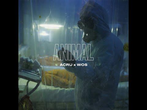 ACRU x WOS - ANIMAL (VIDEO OFICIAL)