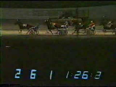 quad city downs harness racing