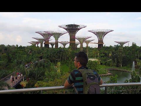 Singapore Vlog: Food Tour & Marina Bay Sands Garden, Afternoon Tea, Light Show!