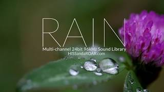 RAIN Ambience Library