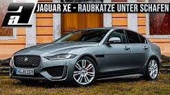 Jaguar XE 2020 | Die feine englische Art in der Mittelklasse? So gut ist er wirklich! | D180S