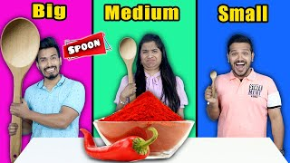 Big Vs Medium Vs Small SPOON Challenge | Food Challenge India | Hungry Birds