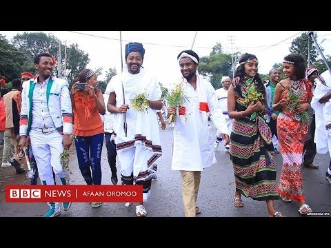 Full Download] New Oromo Music 2019 Afandii Siyyoo