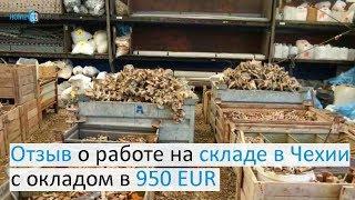 Отзыв о работе на складе в Чехии с окладом в 950  EUR(, 2017-08-09T14:28:34.000Z)