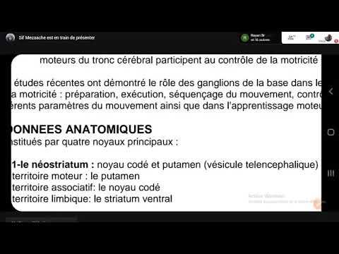 Physiologie Les Ganglions De La Base | 2éme Med