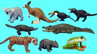 Rainforest Jungle and Australian Wild Animals Toys Collection For Kids