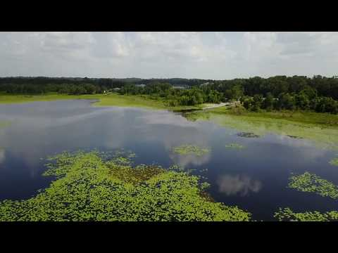 Lake Jackson Tallahassee, Florida 4K DJI Mavic Pro Drone Footage