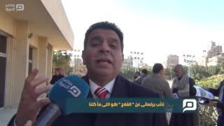 مصر العربية | نائب برلمانى عن