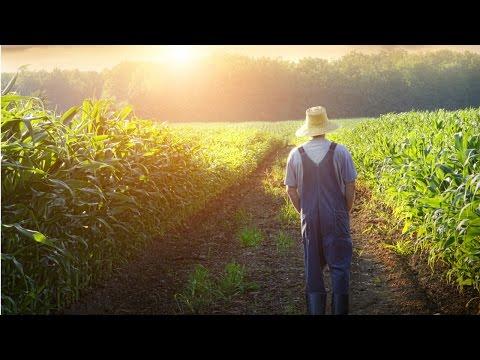 Clique e veja o vídeo Curso Administração da Pequena Empresa Rural