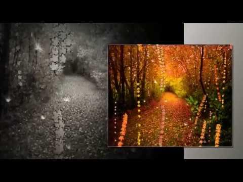 Eddy Huntington   Physical Attraction Осенний пейсаж