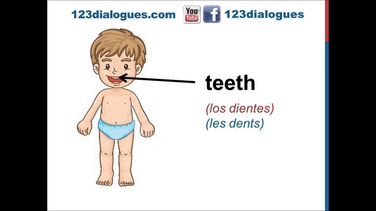 Curso de inglés 18 - Las partes del cuerpo en inglés para niños ...