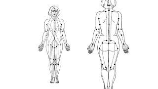 """Медицинский Центр """"Космео-Арт"""" - оздоровительные и лечебные массажи для взрослых и детей"""