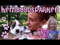 Hembygdsparken med hundar & barn  Hon bet han i TUTTEN!!  Vlogg
