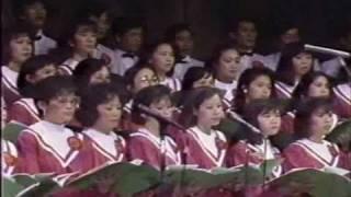 Vị Cứu Tinh - Kim Long