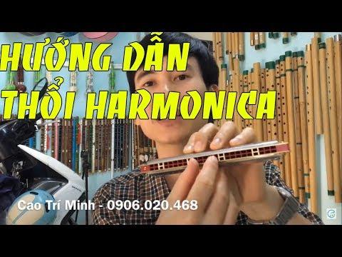 Hướng dẫn cơ bản cách thổi Harmonica || Cao Trí Minh 2019