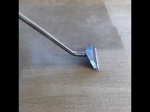 Carpet Cleaning Port Macquarie Youtube