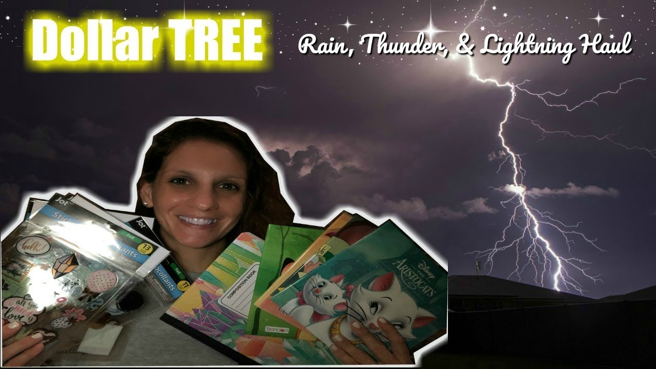 DOLLAR TREE | NIGHT HAUL IN THE RAIN with thunder and lightning (ASMR)