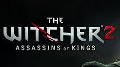 The Witcher 2 Singleplayer