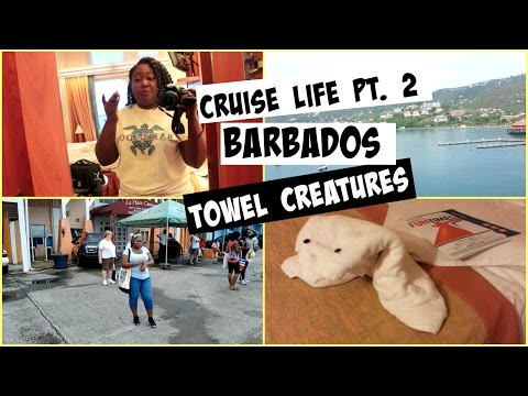 Cruise Life #2: Our State room, St  Kitts, St Thomas, Barbados