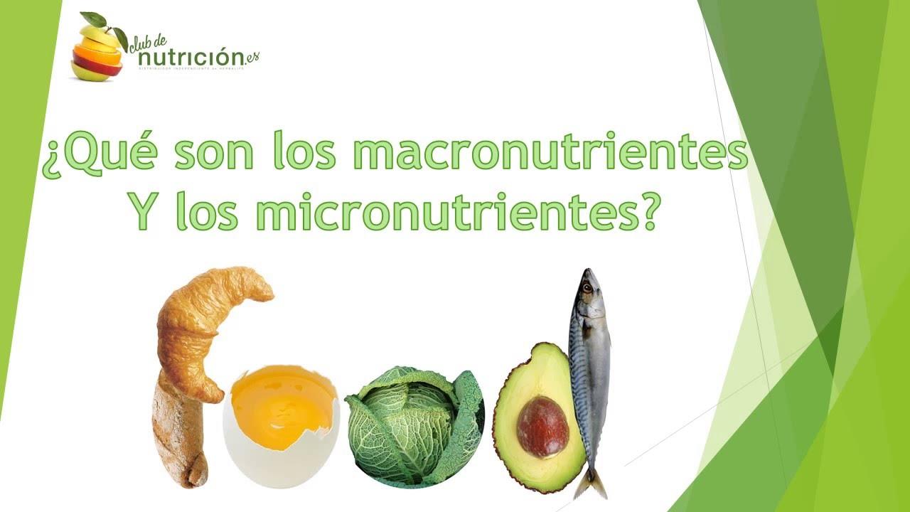 Q Son Los Lemures Macronutrientes y Micr...