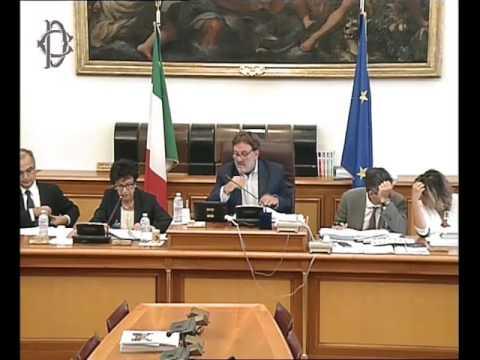 Roma - Audizione Agenzia Italia digitale su economia condivisione (20.09.16)