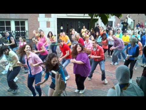 Boston Flash Mob 2011 Tremont Street