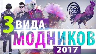 3 ВИДА МОДНИКОВ 2017