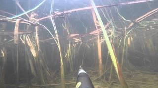 Рыбалка, подводная охота в Астрахани
