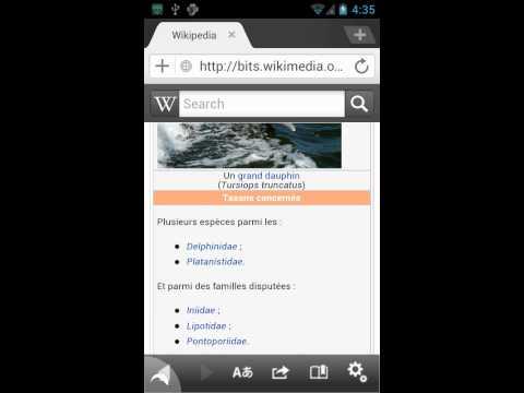 Dolphin Browser Wikipedia Web App Demo