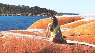 Weltreise Tag 657 • Bay of Fires & St. Helens  • Tasmanien • Vlog #102