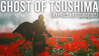 Ghost of Tsushima graphics are gorgeous!