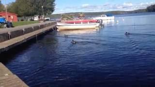 ► Nora sjö , örebro , sverige , orebro sweden
