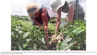 Ms. Erin Kauffmann, Manager of the Durham Farmers' Market, Durham, NC