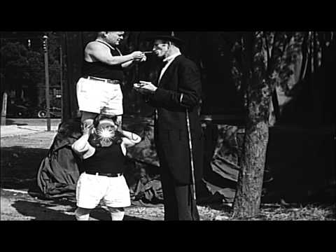 Tall man Ralph Madsen referees a boxing bout between midgets in Los Angeles, Cali...HD Stock Footage