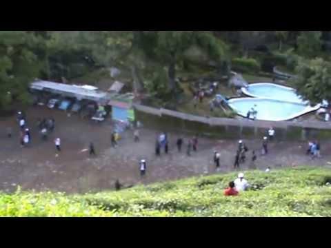 Gambar Kebun Teh Jamus Ngawi Wisata Kebun Teh Jamus Ngawi Jawa Timur Youtube