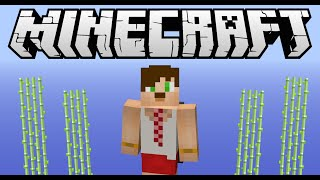 Minecraft Otomatik Basit Şeker Kamışı Farmı !