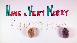 Day 12: Merry Christmas - Cute Hamsters: 12 Days of Christmas